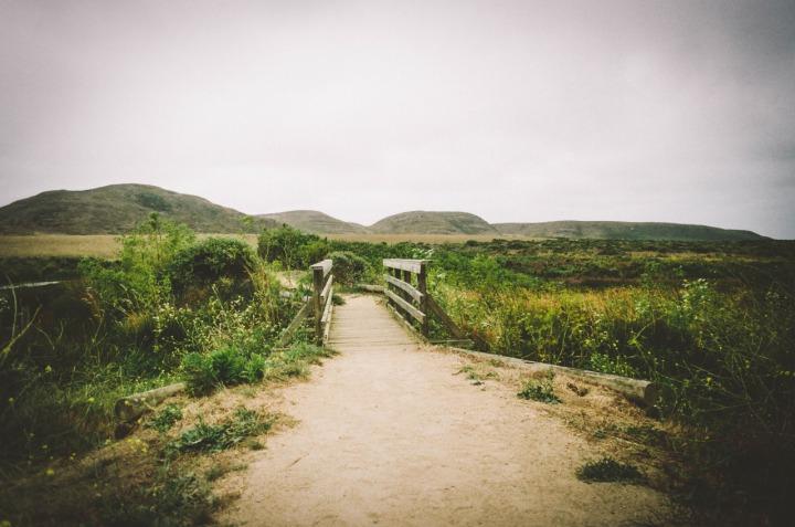 #MondayBlogs: Finding Focus